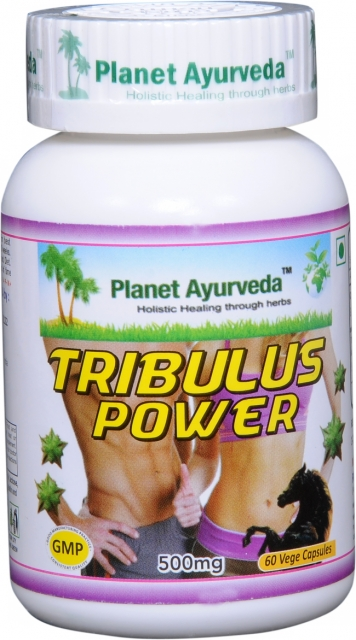 Tribulus Power Kapsuly